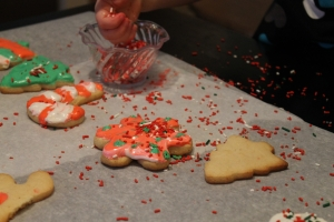 cookies 2 021